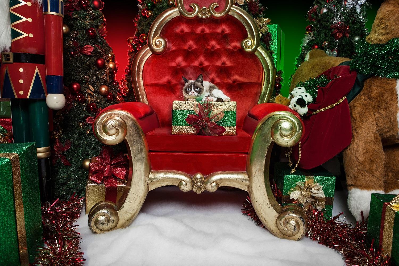 『グランピーキャットの最低で最高のクリスマス』