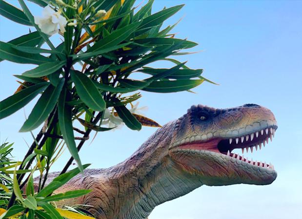 ヨコスカ恐竜パーク 2019
